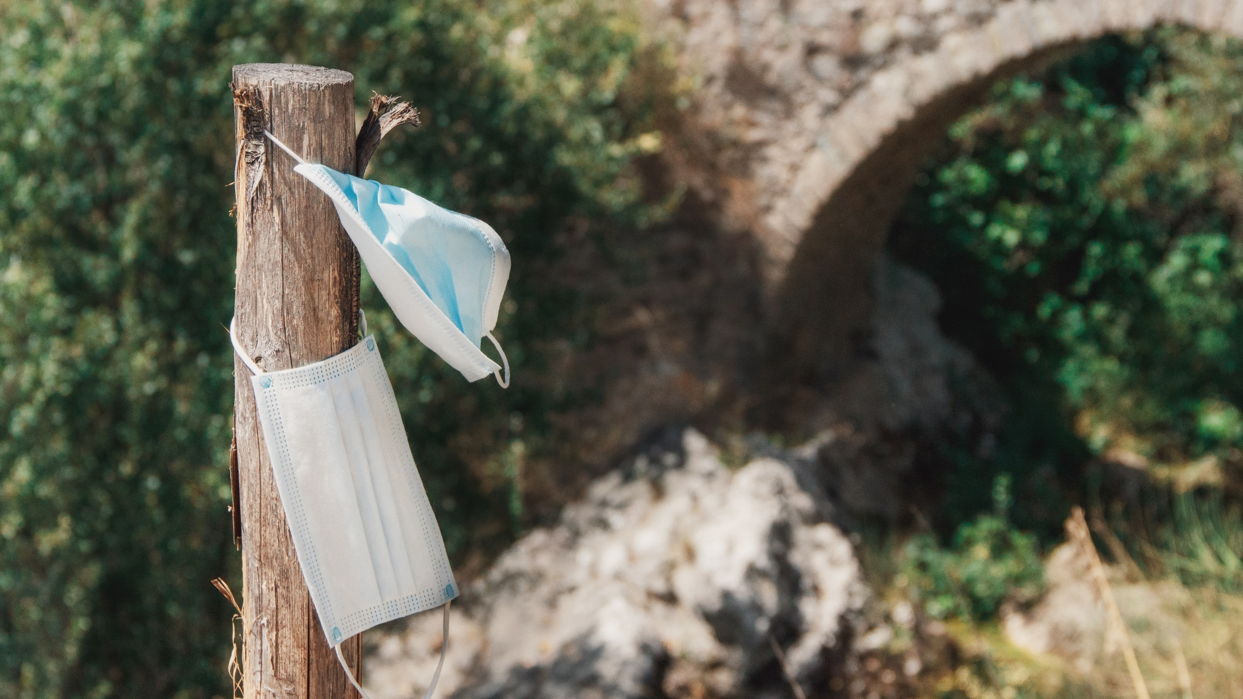 Used disposable masks hanging on a post in a forested area