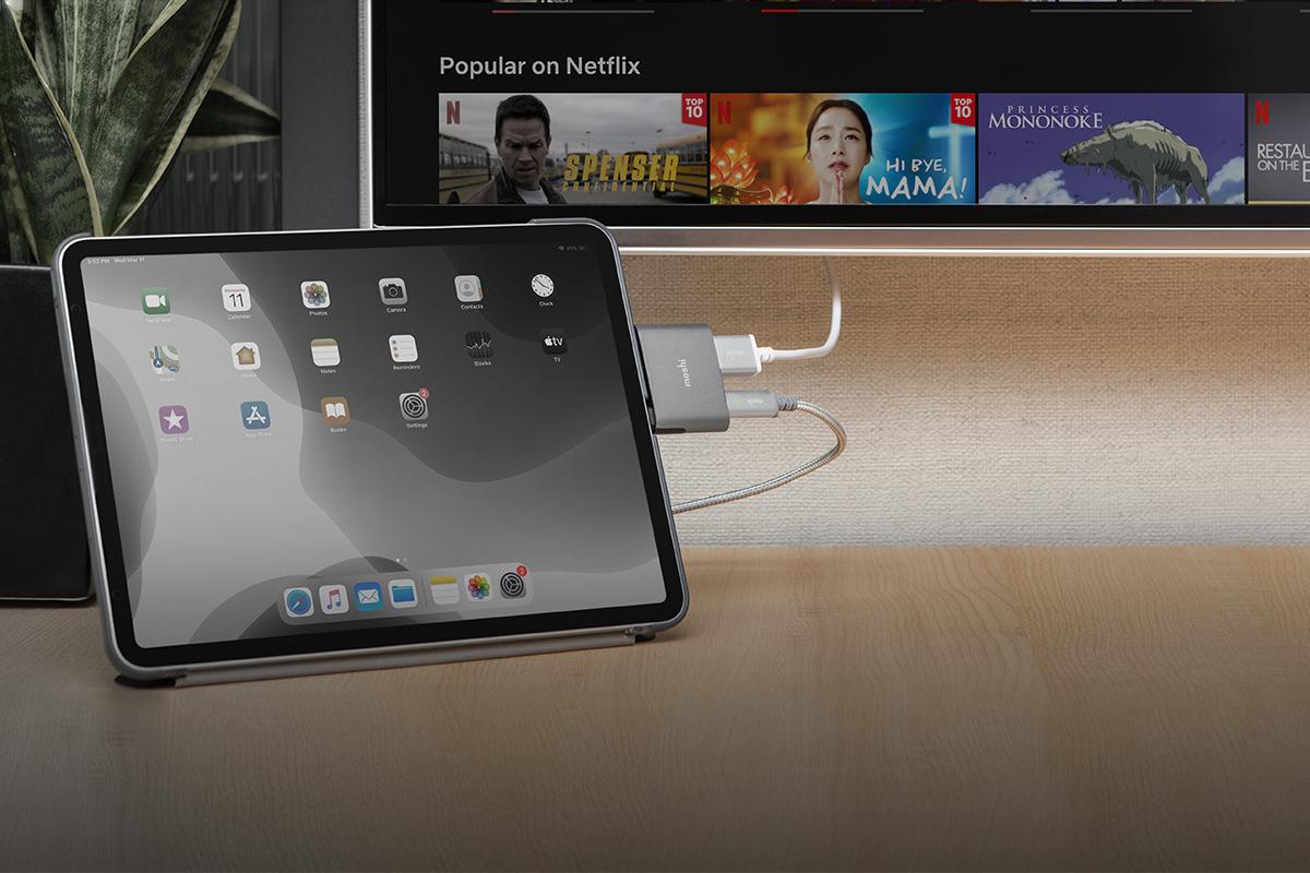 HDR-Inhalte sind jetzt auf Netflix, Amazon, Rakuten TV usw. problemlos möglich. Mit jedem 4K-HDR-Produkt von Moshi wird Ihnen das beste Seherlebnis garantiert.