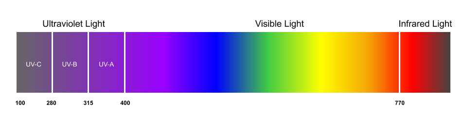 Illustration of the light spectrum showing the wavelengths of various kinds of UV light